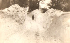 Go to In The Snow 1947